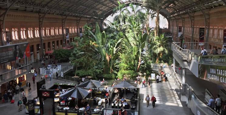 Nhà ga Atocha (Madrid, Tây Ban Nha) - Nguồn ảnh: Interesting Engineering.