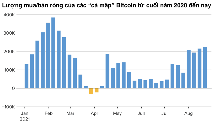 """""""Cá mập"""" Bitcoin âm thầm gom mua khi giá lên 50.000 USD - Ảnh 1"""