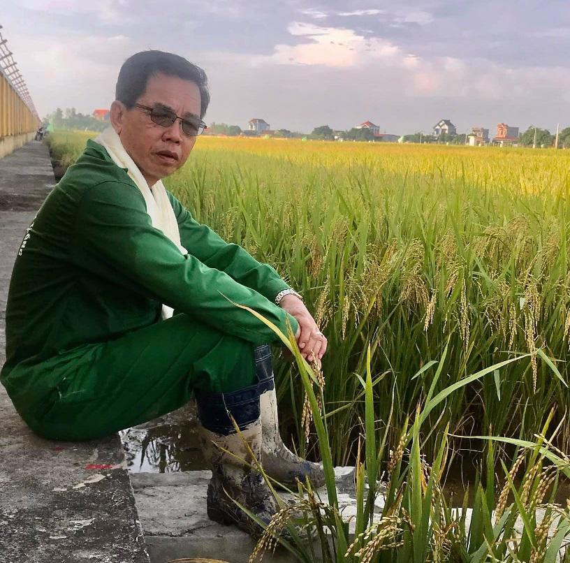 Ông Trần Mạnh Báo – Chủ tịch HĐQT, Tổng Giám đốc Công ty Cổ phần Tập đoàn ThaiBinh Seed