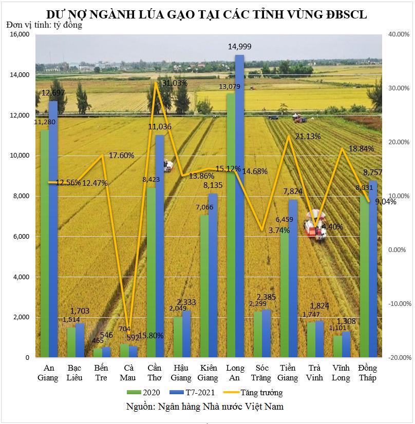 Ngân hàng chung tay tháo gỡ khó khăn ngành lúa gạo - Ảnh 1