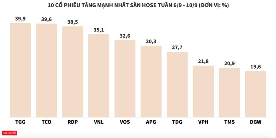 Cổ phiếu VMD rơi tự do, TGG chưa hết công cuộc tìm đỉnh - Ảnh 2