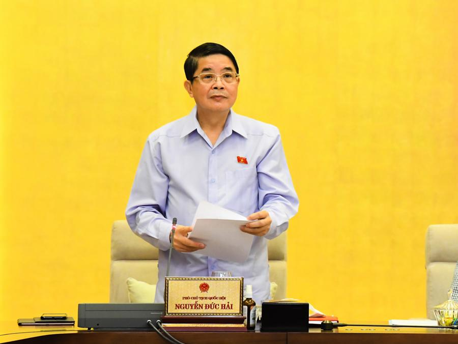 Phó Chủ tịch Quốc hội Nguyễn Đức Hải phát biểu tại phiên họp. Ảnh: Quochoi.vn