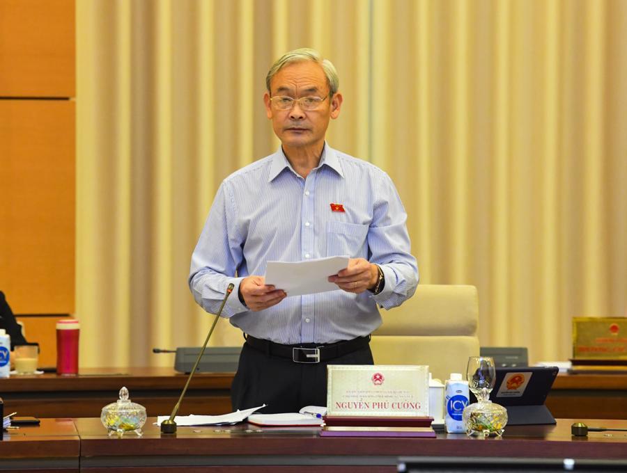 Chủ nhiệm Ủy ban Ủy ban Tài chính, Ngân sách Nguyễn Phú Cường trình bày báo cáothẩm tra - Ảnh: Quochoi.vn