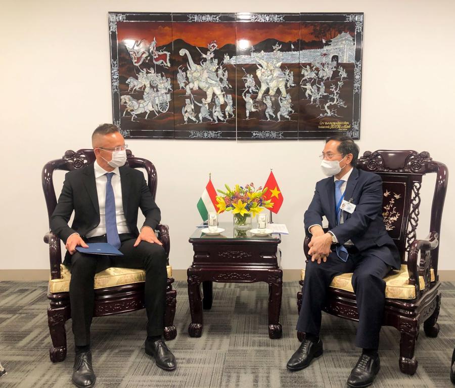 Bộ trưởng Ngoại giao Bùi Thanh Sơn gặpBộ trưởng Ngoại giao Algeria Ramtane Lamamra - Ảnh: Bộ Ngoại giao