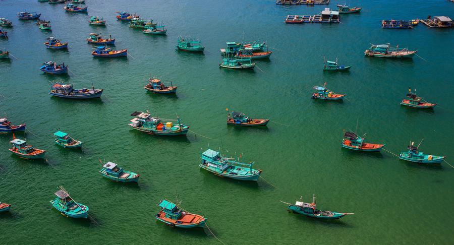 Bùng phát ổ dịch, doanh nghiệp du lịch Phú Quốc lo lắng cho kế hoạch thí điểm - Ảnh 1