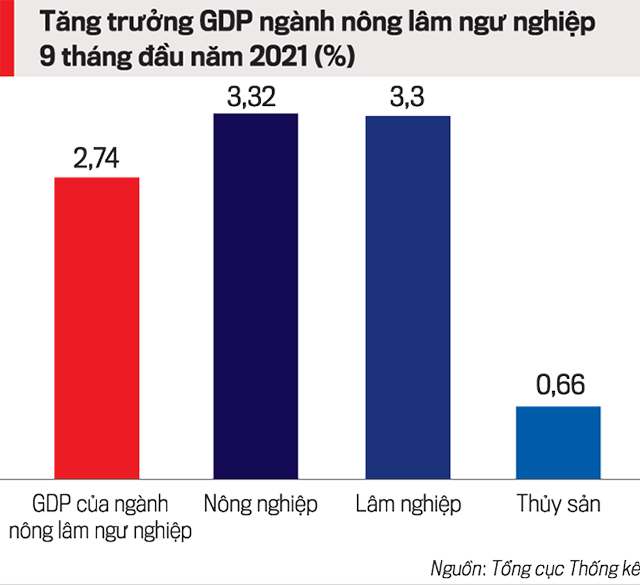Tăng trưởng GDP theo từng lĩnh vực