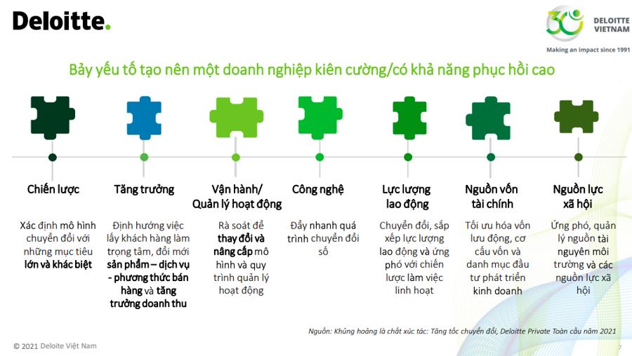 Chủ tịch Deloitte Việt Nam: Hành trình mới của doanh nghiệp là sống cùng tất cả các loại khủng hoảng - Ảnh 1